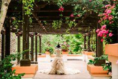 Zoo Garden Rancho Las Lomas Wedding Photography Photographer Kevin Le Vu Orange County Venue 1