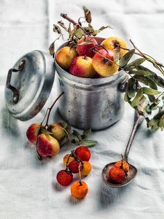 noperfectdayforbananafish:    (via Forgotten Fruits on Behance)