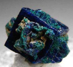 Boleite covered with possibly vivid blue Cumengite and green Paratacamite. From Amelia Mine, Santa Rosalia, Baja Sur, Mexico