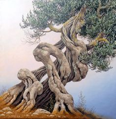 Reminds me of a mother holding her children Weird Trees, Twisted Tree, Magical Tree, Tree Faces, Unique Trees, Old Trees, Tree Roots, Nature Tree, Tree Art