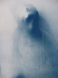 Cyanotype from Degree Show. Lauren Boyes