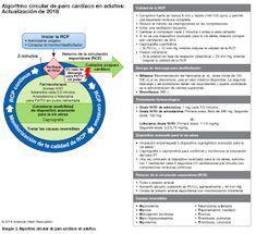 EMS SOLUTIONS INTERNATIONAL marca registrada: ASPECTOS DESTACADOS de las Actualizaciones detalladas de las guías de la American Heart Association para RCP y ACE del 2018: soporte vital cardiovascular avanzado y soporte vital avanzado pediátrico Resucitación Cardiopulmonar (BLS / SVB). pdf Gratis Ems, Chart, American, Emergency Medicine, Move Forward, Highlights