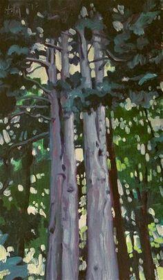 """""""Redwoods"""" - Original Fine Art for Sale - © Ski Holm"""