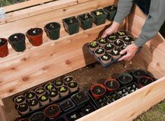 How to Build a Cold Frame For Winter Gardening (With Plans!) - Your plant-growing season can start long before warm weather hits -- all it takes is a wooden cold frame box with a transparent roof. Here's how to build one of these mini-greenhouses yourself Pvc Greenhouse, Homemade Greenhouse, Greenhouse Ideas, Miniature Greenhouse, Greenhouse Wedding, Hydroponic Gardening, Organic Gardening, Gardening Tips, Cold Frame Gardening