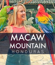 Copan, Honduras and the surrounding valley are rich with sights and activities for travelers, including the popular Macaw Mountain, a facility dedicated to rehabilitating rescued macaws and other birds. | Alex in Wanderland