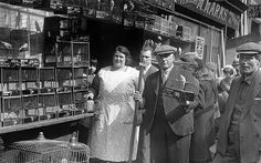 East-end bird shop, 1935.  A new photography exhibition provides a poignant and beautiful retrospective   of London's extinct East End.