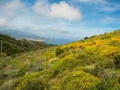 Le 10 cose che puoi fare in primavera all'isola d'Elba | Blog Visit Elba