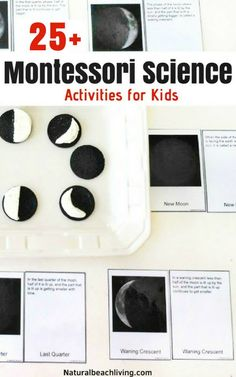 Fun Montessori science activities for seasons, themes, and a variety of hands on activities. Preschool Science experiments, Kindergarten Science Activities, Everything you need to start Montessori science in your home or classroom, Montessori science curriculum for 3-6 year olds, Montessori science experiments for 6-9 year olds , Life Cycles Activities for Kids, Astronomy, Animal Activities for Kids, Montessori toddler activities #Montessori #scienceforkids #preschool