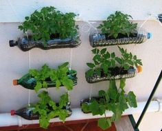 30 Stunning Low-Budget DIY Garden Pots and Containers - Container Gardening