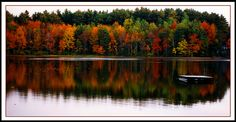 I love New Hampshire. and this is one of the reasons.