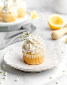 Lemon Blueberry Cupcakes w/ Mascarpone Whip Cream - Food Duchess Cupcake Flavors, Cupcake Recipes, Dessert Recipes, Desserts, Sprinkle Cupcakes, Sweet Cupcakes, Lemon Recipes, Baking Recipes, Lemon Blueberry Cupcakes