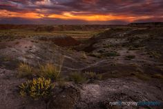 Storms to the south create a dramatic sunset over the Painted Desert in the Petrified Forest National Park near Holbrook, Arizona. Holbrook Arizona, Petrified Forest National Park, Painted Desert, Storms, Landscape Photography, National Parks, Country Roads, Sunset, Create
