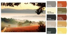 Tuscan Color Palette | Interior Color Schemes for Global Style: Italy