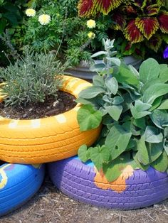 Recycling tyres for plant pots! We love the idea of piling them on top of each other to create height! Great for strawberries or herbs #muddyboots