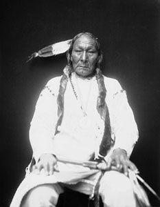Der Cheyenne Magpie