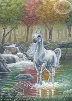 unicorns | Cornify | UnicornPedia | UnicornPictures | So I was Like | Cat ...
