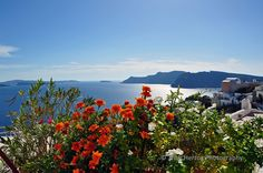 Overlooking the Aegean | Trish Herzog Photography