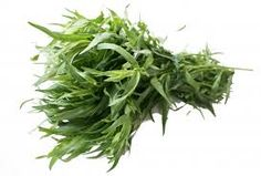 Billedresultat for estragon Herbs, Food, Herb, Meals, Yemek, Eten