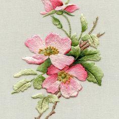 briar rose 3