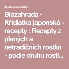 Biozahrada • Křídlatka japonská - recepty : Recepty z planých a netradičních rostlin - podle druhu rostliny Edible Plants, Recipes, Rezepte, Recipies, Cooking Recipes, Recipe