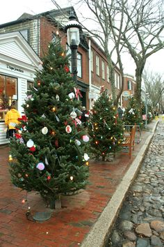 Main Street Trees decked for Nantucket Stroll 2012 <3