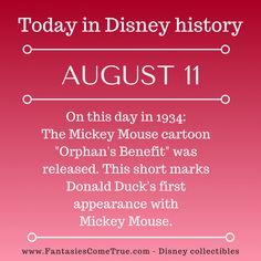 #Disney #DisneyHistory Disney World Facts, Disney Fun Facts, Walt Disney World, Disney Movies, Disney Pixar, Disney Trivia, Disney Stuff, Disney Classics Collection, Mickey Mouse Cartoon