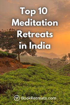 Top 10 Meditation Retreats in India 2021 That Won't Break the Bank #unplug #destress #recharge Kundalini Yoga, Ashtanga Yoga, Vinyasa Yoga, Yoga Sequence For Beginners, Meditation For Beginners, Meditation Retreat, Guided Meditation, Yoga Nidra, Yoga Sequences