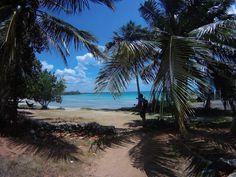 playa larga kuba Strand, Beach, Water, Outdoor, Cuba, Caribbean, Travel Advice, Island, Viajes