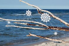 lace webs