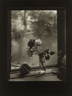Josef Sudek  'The Last Rose' from the Rose series  1956