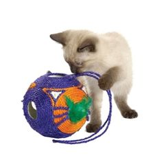 Ball Head to Head Scratching Toy for Cats