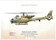 Westland Gazelle, British Army Air Corps