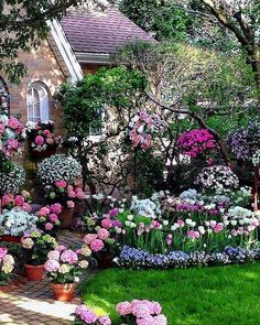 ������������ #rose #landscape #flowers #kaktüs #design #sukkulent #topiary #tasarım #mimar #sun #shine #landscape #tree #taş#gross #garden #bahçe #grass  #botanical #green #rose #forest #geofit #ikebana #ornamental #cim #ağaç #çiçek #flowers #peyzaj #peyzajmimari #mimar #pink #rose #green http://turkrazzi.com/ipost/1521629282413007755/?code=BUd6cU6D1OL