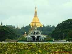 A view of Shwedagon pagoda from People's Park