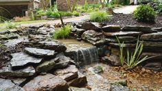 A new Pondless Waterfall twists and turns as it flows down this hill, providing several viewing opportunities.