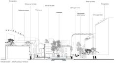 Dynamisch masterplan Cityplot Buiksloterham - Amsterdam - Delva Landscape…