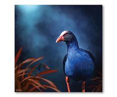 Julian Hindson -  Pukeko on the prowl...NZ artist.  Available at Industria.co.nz