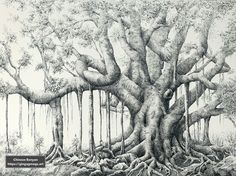 A chinese banyan from my imagination Ink Pen Drawings, Moose Art, Chinese, Prints, Animals, Imagination, Portraits, Drill Bit, Art Paintings