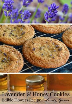 Lavender Cookie Recipe - this recipe combines the honey-sweet and buttery flavour of the cookie with the aromatic flavor of edible lavender flowers. Beautiful and delicious! Edible Lavender, Culinary Lavender, Lavender Recipes, Lavender Honey, Lavender Flowers, Lavender Buds, Edible Flowers, Lavender Chicken, Lavander