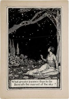 A Polar Bear's Tale: By Edith Ballinger Price I love this illustration of a starry night spent gazing into the sky from a beautiful garden spot. Foto Poster, Wow Art, Nocturne, Stars And Moon, Oeuvre D'art, Art Inspo, Digital Illustration, Fairy Tales, Whimsical