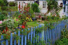 blue picket garden fence...love...