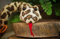 festa-aniversario-infantil-safari-bendita-festa-cobra