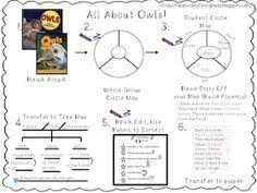 First Grade Fanatic!: Common Core Writing: First Grade! Second Quarter
