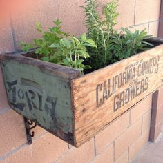 Herb box made from an old fruit crate. Hill Country Homes, Urban Cottage, Old Crates, Modern Garden Design, Simple Flowers, Flower Planters, Flower Boxes, Planter Boxes, Front Yard Landscaping