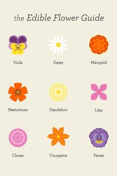edible flowers - I'd like to find a much broader list, but this is a good start