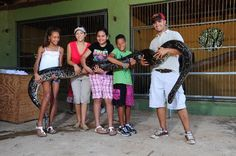 #aioutlet I would love to visit this zoo.  Local wildlife!  snake pics from http://www.tripadvisor.com/Attraction_Review-g488162-d2513634-Reviews-Philip_s_Animal_Garden-Noord_Aruba.html