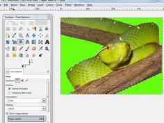 How to Remove a Background Using the GIMP Paths Tool #gimp #dustyjunk.com