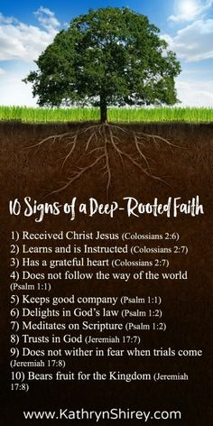How deep is your faith? How strong are your roots? Deep-rooted faith will sustain you through droughts, steady you through trials, and nourish you to thrive. Pinned by Minister LaVonne Thomas. Faith Prayer, Faith In God, Strong Faith, Bible Scriptures, Bible Quotes, Faith Quotes, Biblical Verses, Encouragement Quotes, Quotable Quotes
