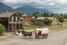 Fort Steele heritage town and Mt Fisher near Cranbrook, B. Family Adventure, Fisher, Buildings, The Past, History, House Styles, Historia