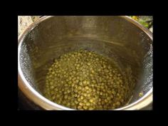 INSTANT POT - TUVAR LILVA (PIGEON PEAS) CURRY + RICE - YouTube